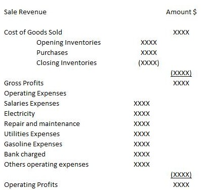 Income Statement Multi Step Income Statement Format Income