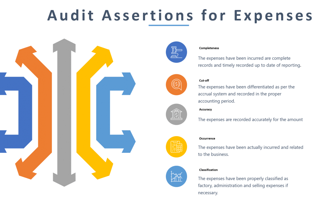 Audit Expenses: Assertions, Risks and Procedures
